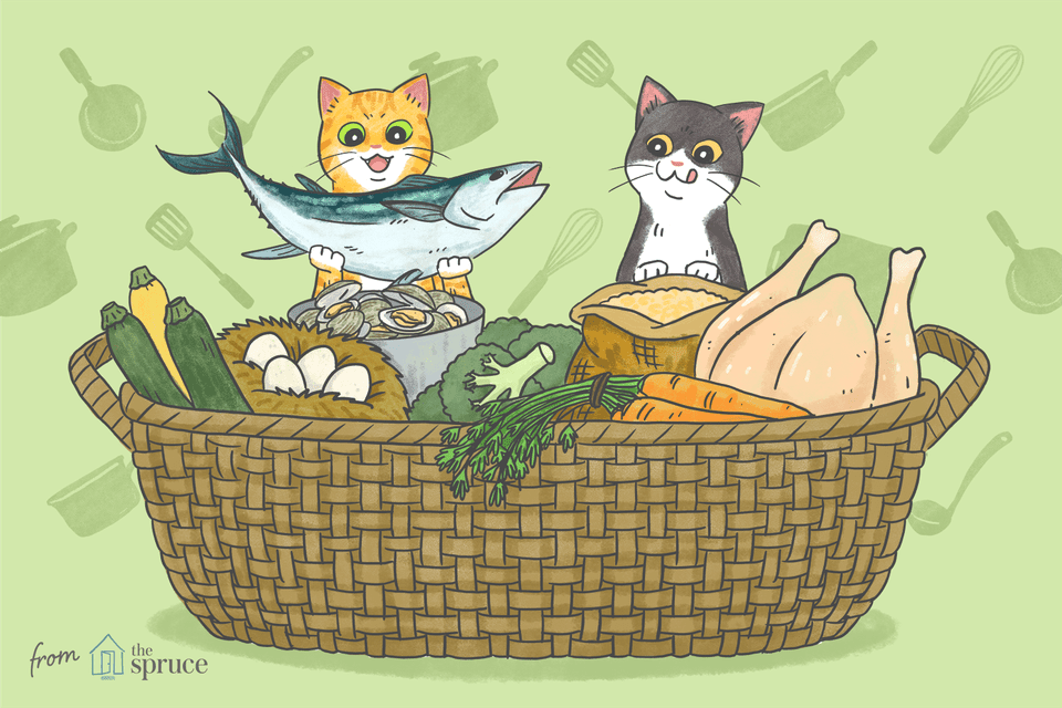 illustration of homemade cat food