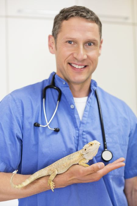 veterinarian holding a bearded dragon