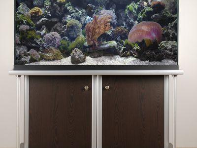 How to Build Your Own Aquarium Chiller