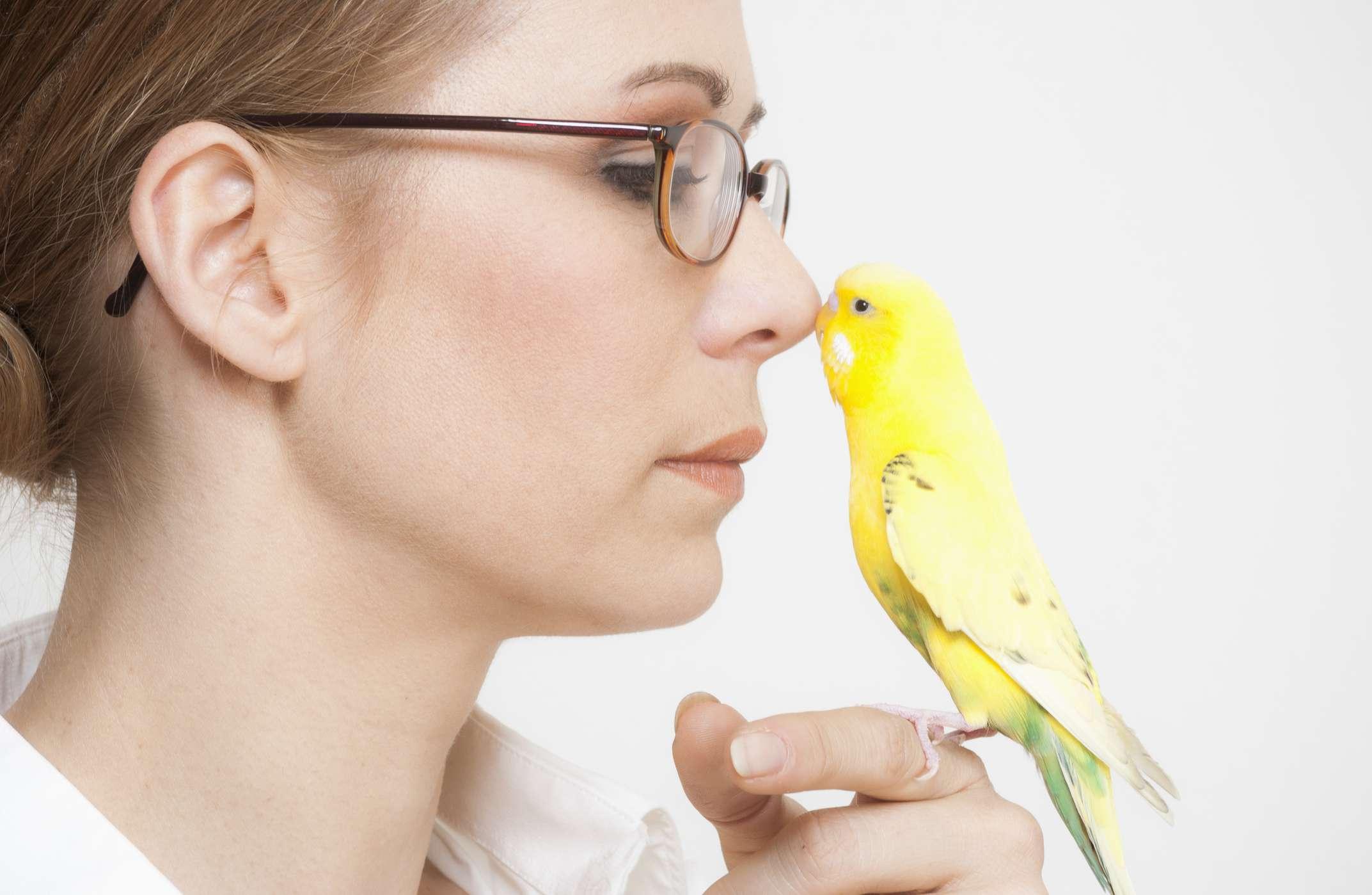 bird bonding with woman