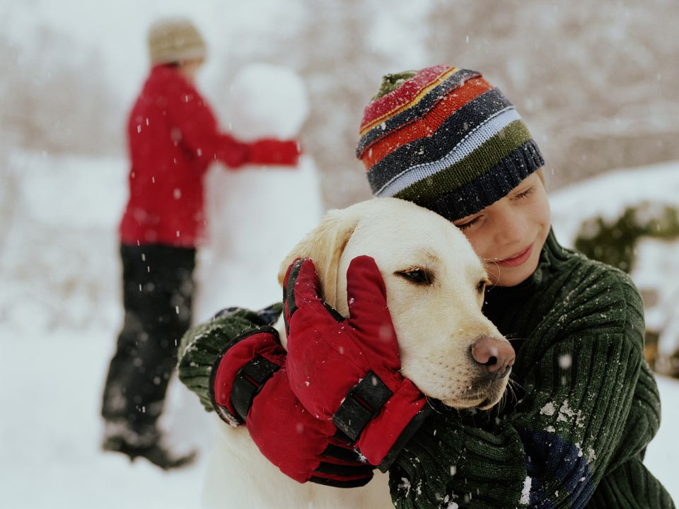 Dog getting hugged by a boy during snowfall