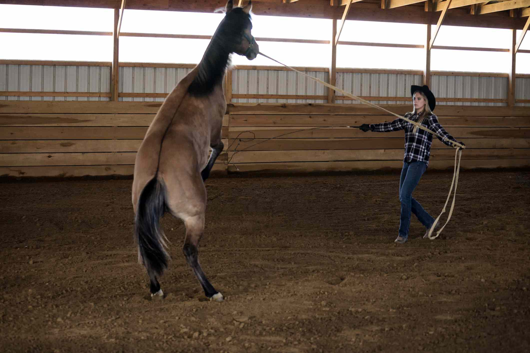 Girl using whip to train a horse