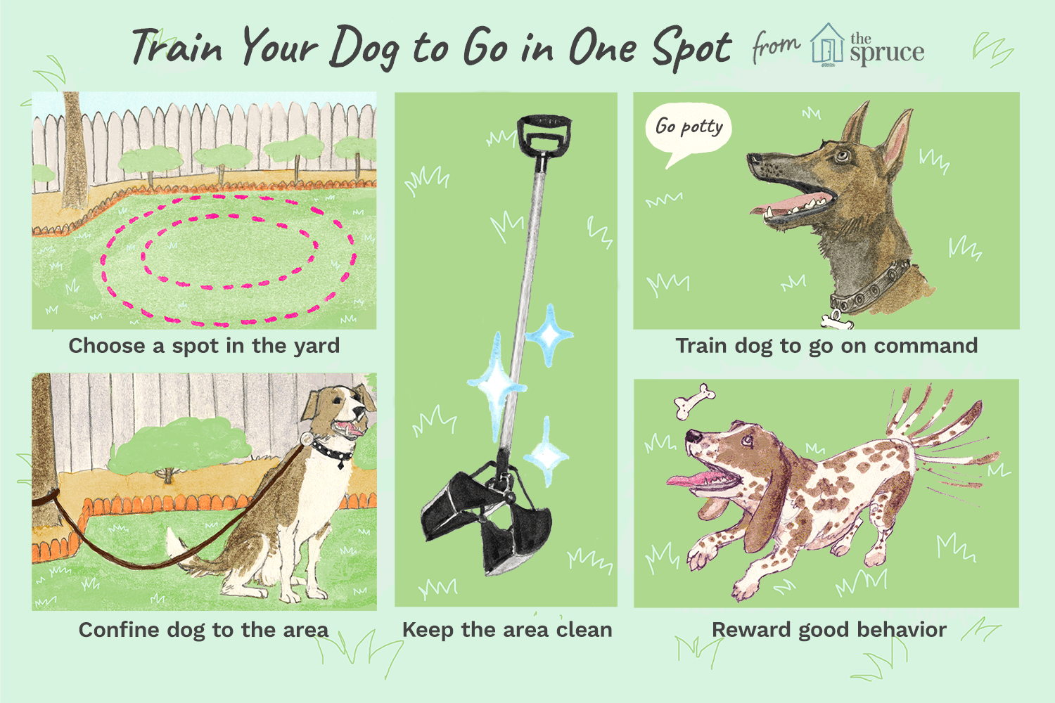 To Train Your Dog Go Potty In One Spot