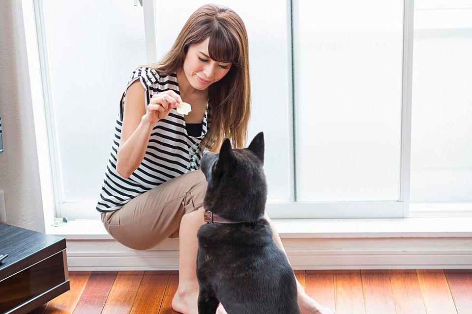 Woman feeding dog in living room