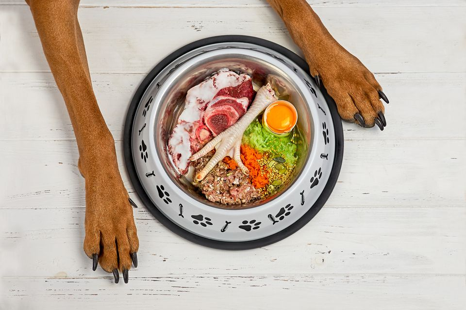 Raw food in dog bowl with dog feet.