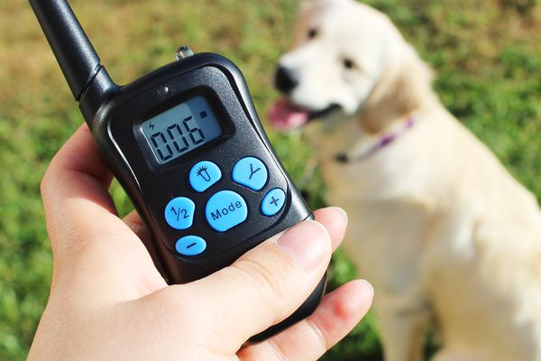 Mockins Electric Remote Dog Training Collar