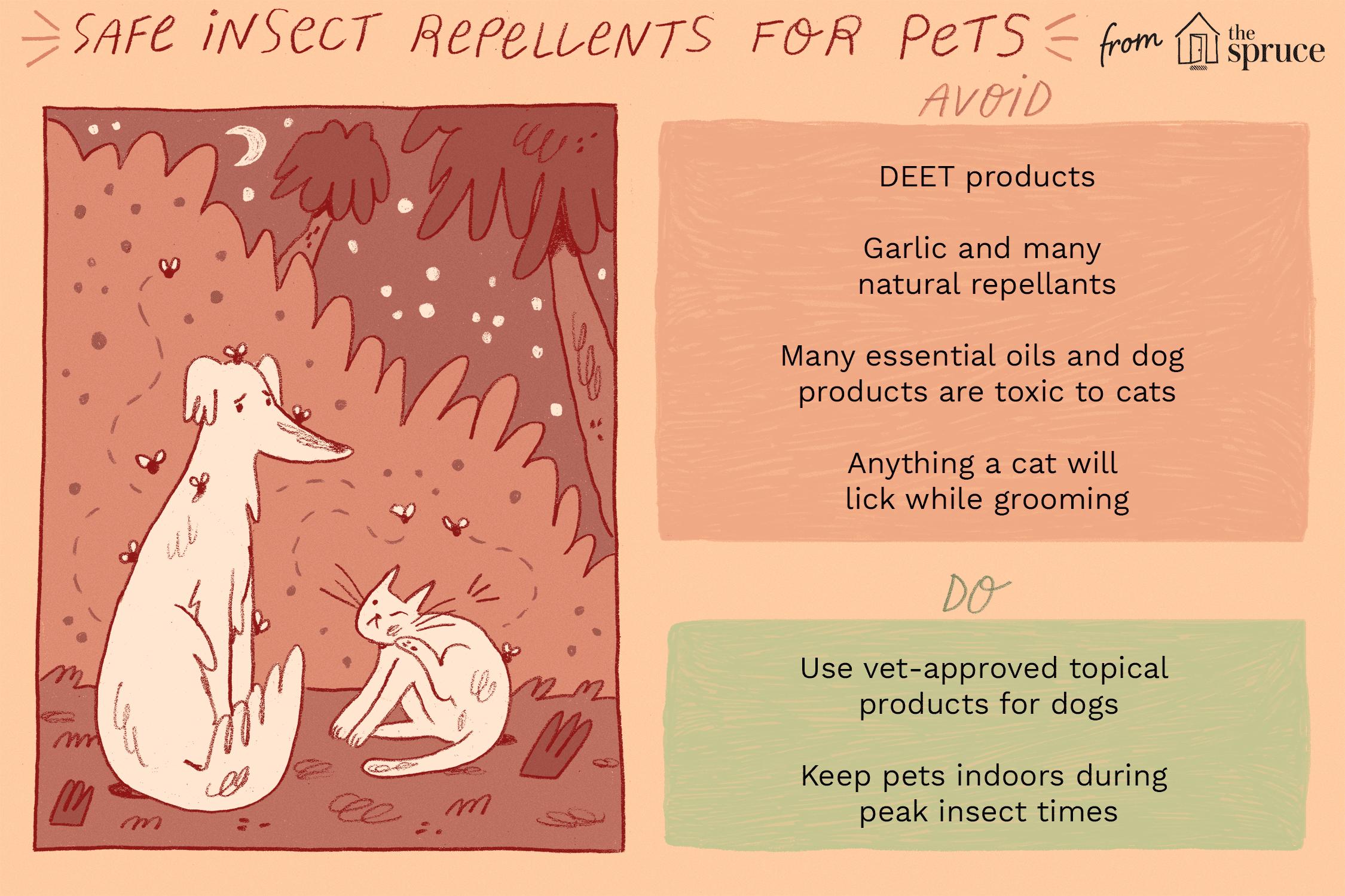 Ilustración de repelentes de insectos tóxicos y seguros para perros y gatos