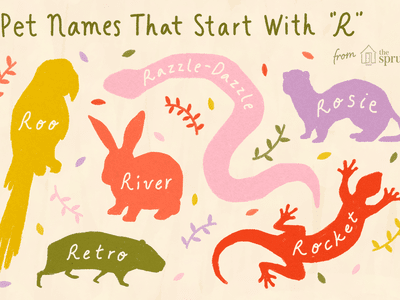 Exotic Pet and Dog Names that Start With the Letter B