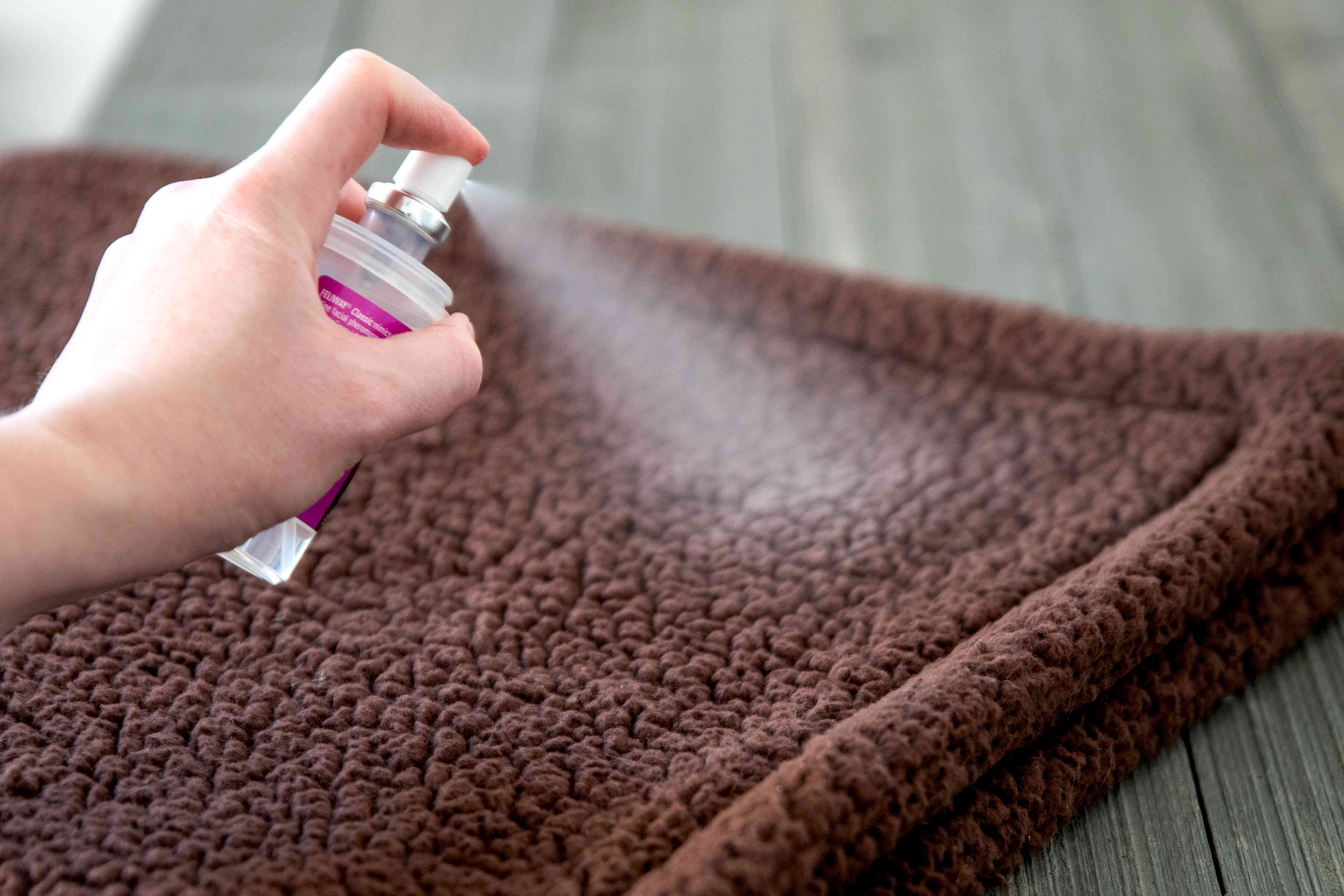 Spray covering rug with calm scents to stop overgrooming