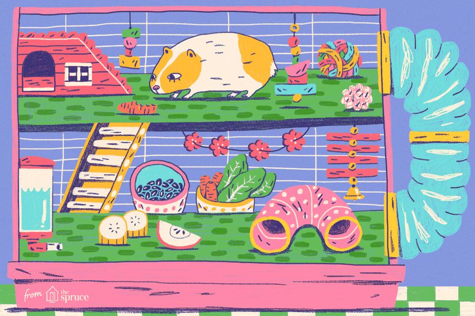Ilustración de conejillo de Indias en una jaula