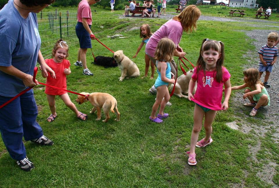 Puppies interacting with a bunch of kids and adults