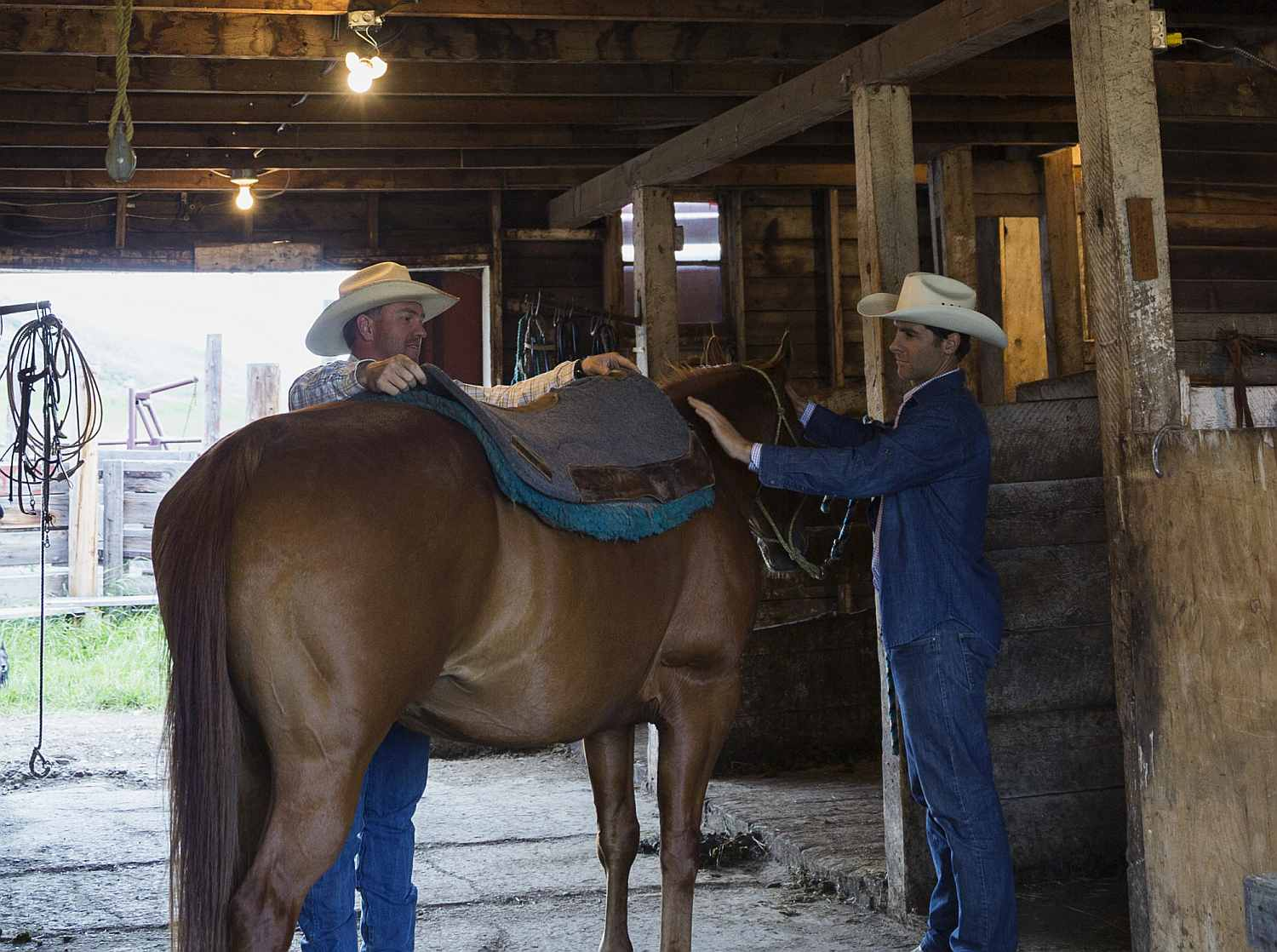 Smoothing out the saddle pads.