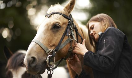 Woman caring for a horse that is wearing a bridle.