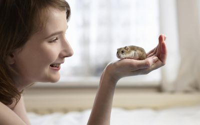 How to Care for Hamsters