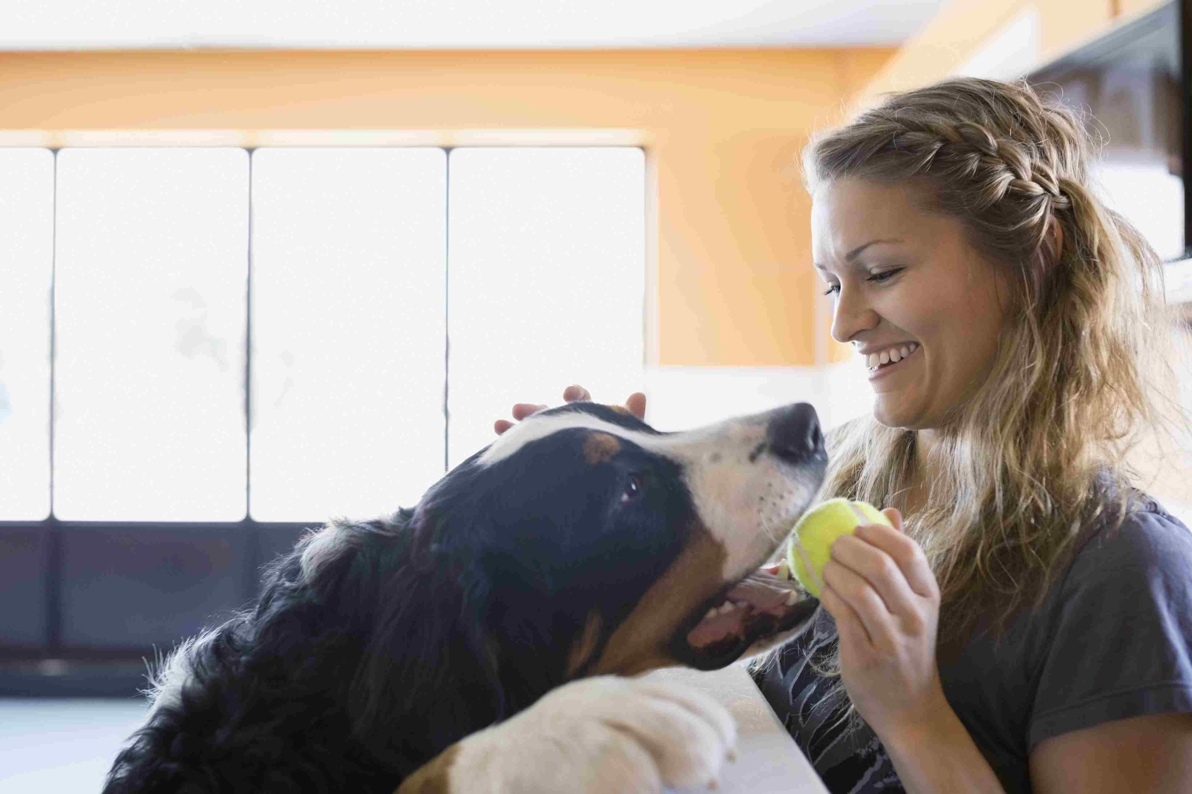 beginner new dog owner