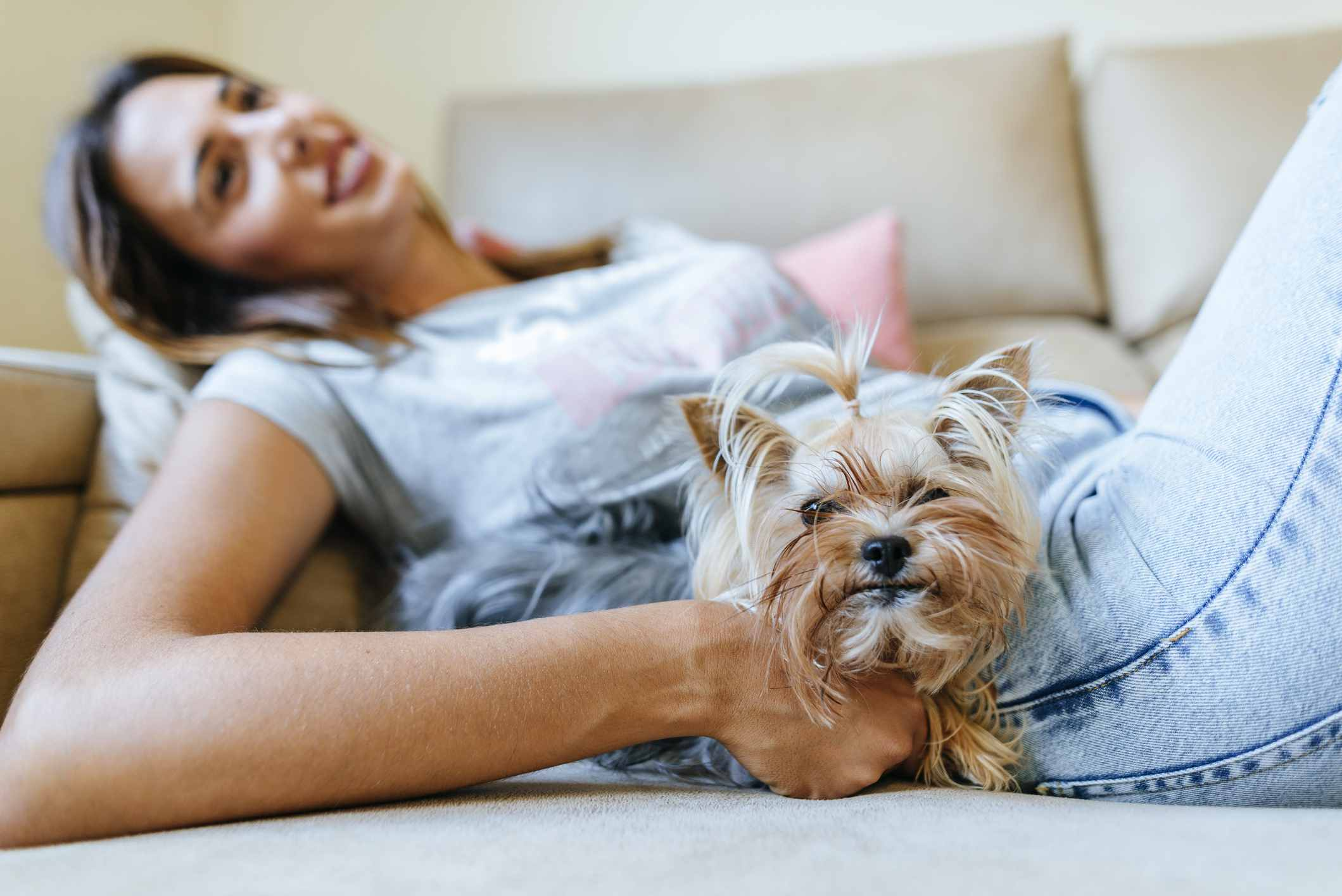 Yorkie and owner on couch
