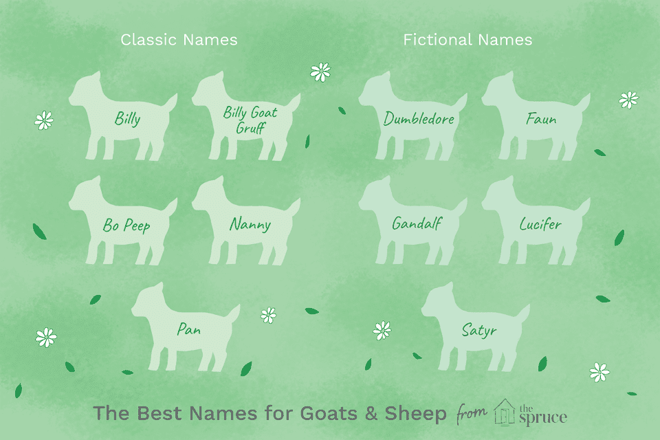 name ideas for goats