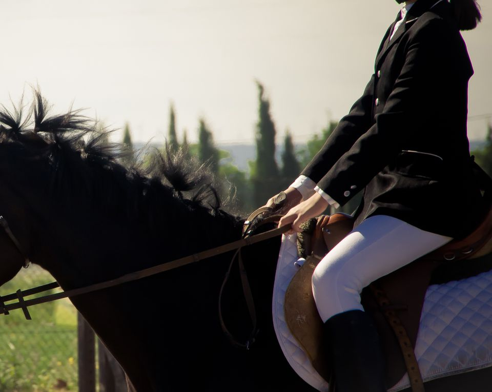 Horse rider holding the reins with flat hands