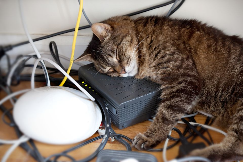 Cat lying on electronics surrounded by electrical cords