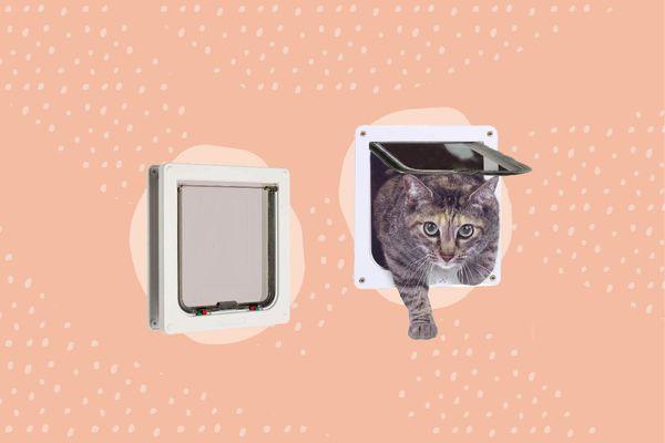 Best Cat Doors