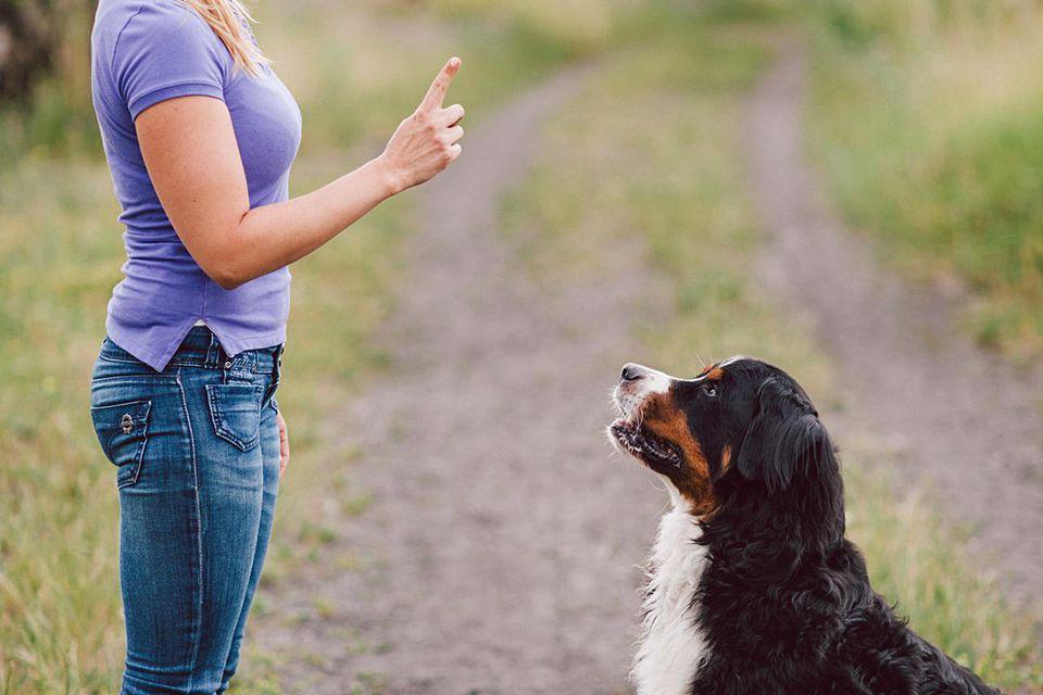 Mujer mostrando dedo de advertencia a su perro al aire libre