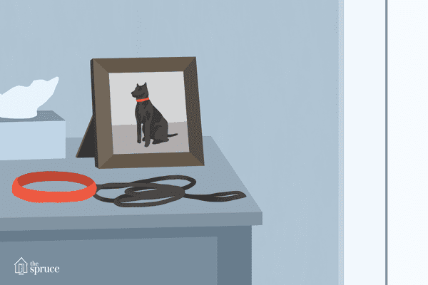 Mourning the loss of your dog
