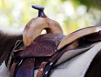 Saddle with pad on top of a horse.