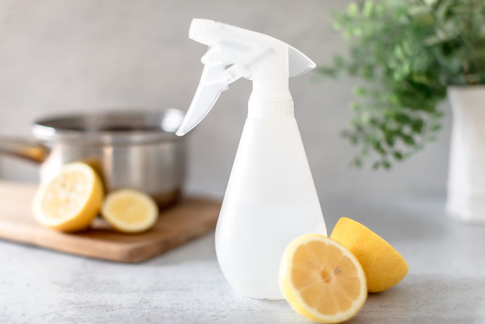 Clear spray bottle with slices of lemon for preventing fleas