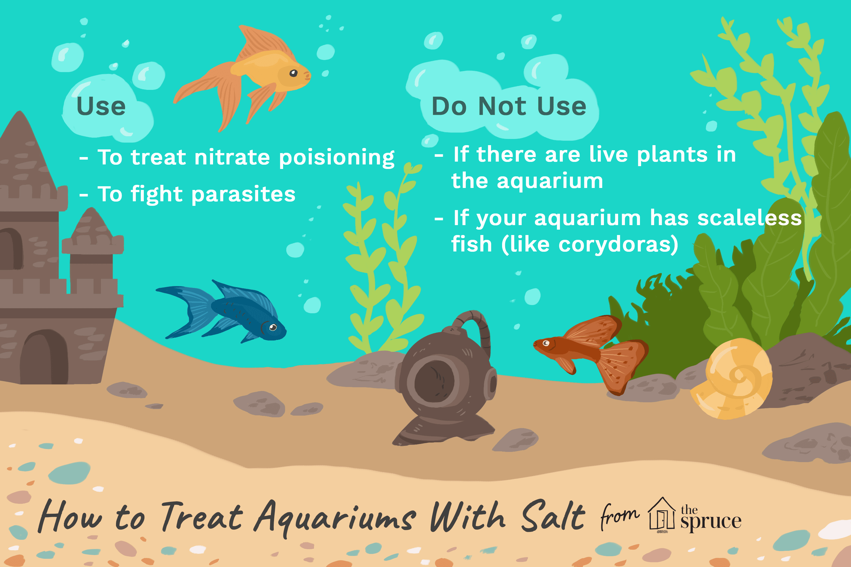is it okay to use salt in a freshwater aquarium