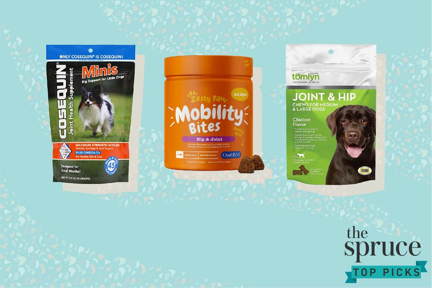 Best Glucosamine Supplements for Dogs