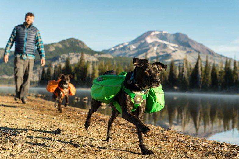 Ruffwear Approach Full-Day Hiking Pack