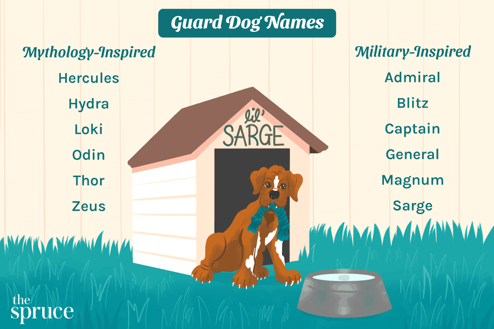 Guard Dog Names