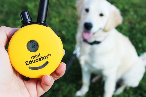 ET-300 Mini Educator Remote E-Collar