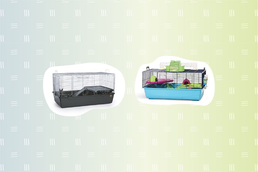 Best Hamster Cages
