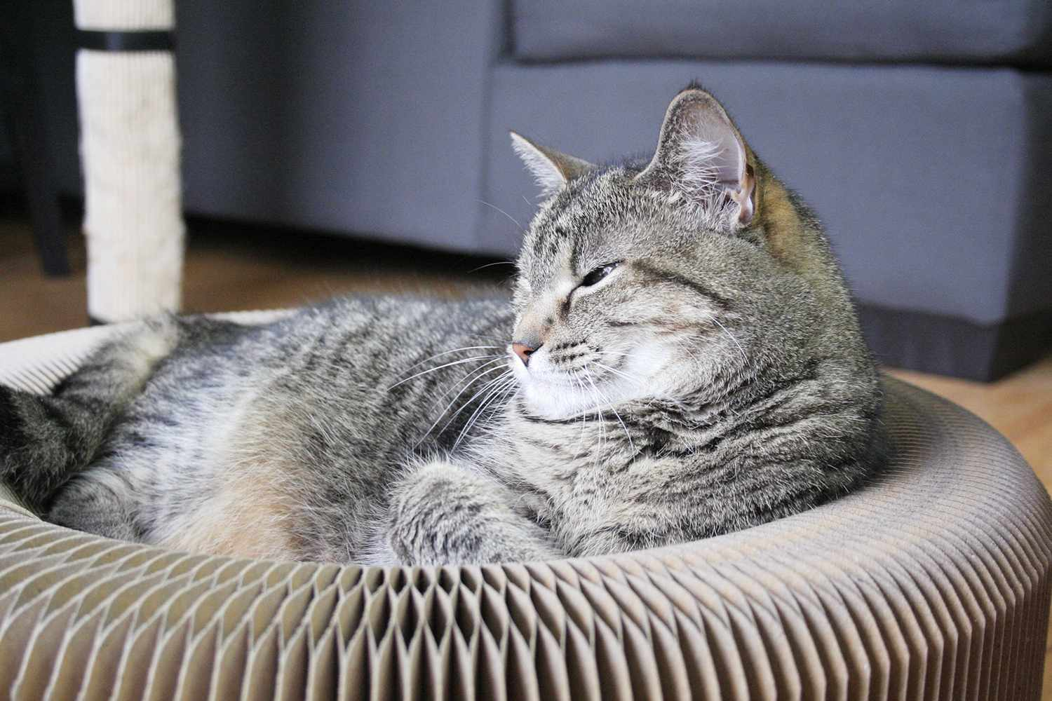 YOUTHINK Cat Scratcher Cardboard Lounger