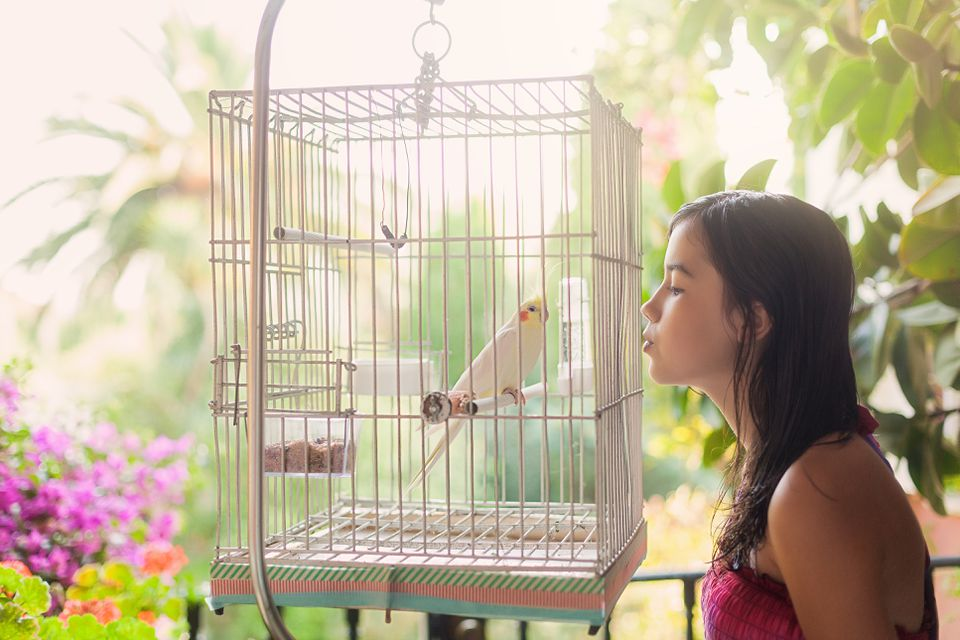 Kissing a bird