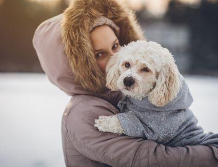 Little girl enjoying winter with her dog
