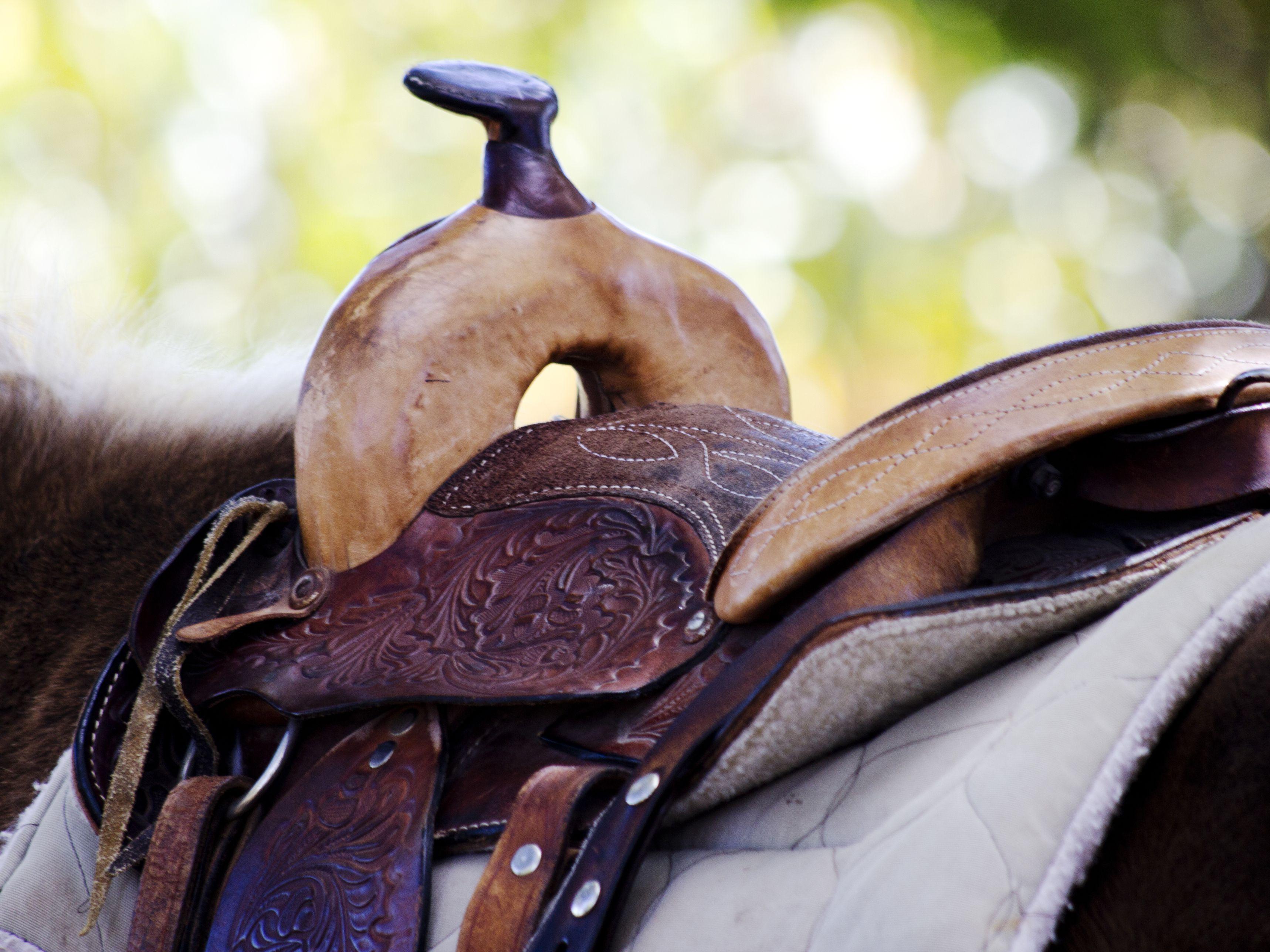 Choosing A Western Saddle Blanket Or Pad