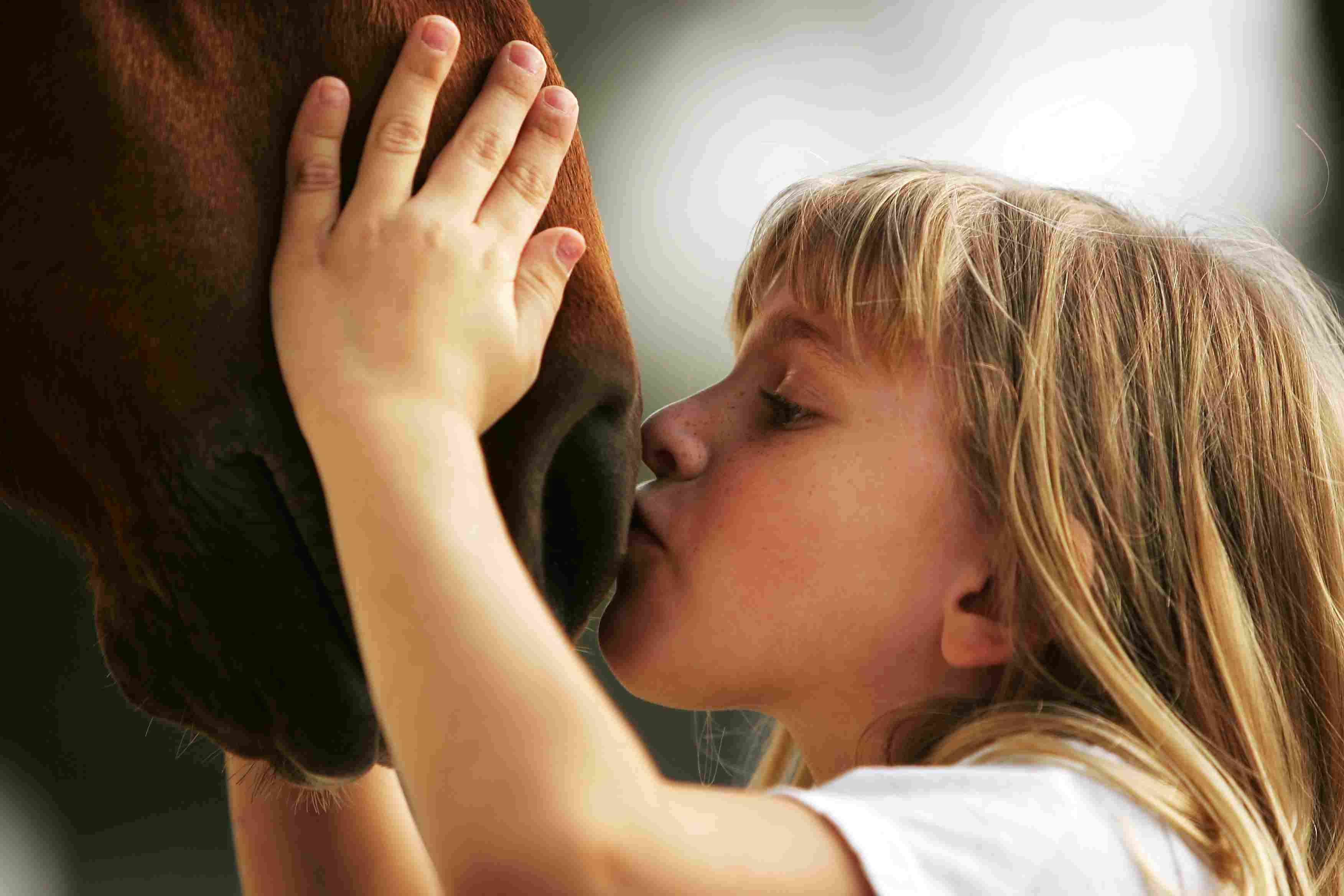 girl kissing horse nose