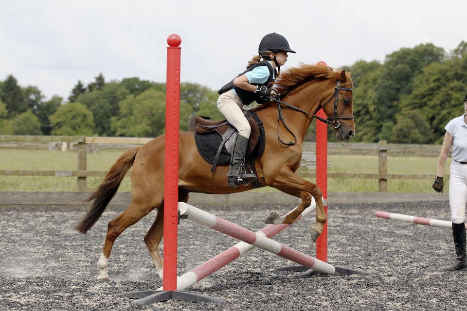 niña escolarizando su caballo