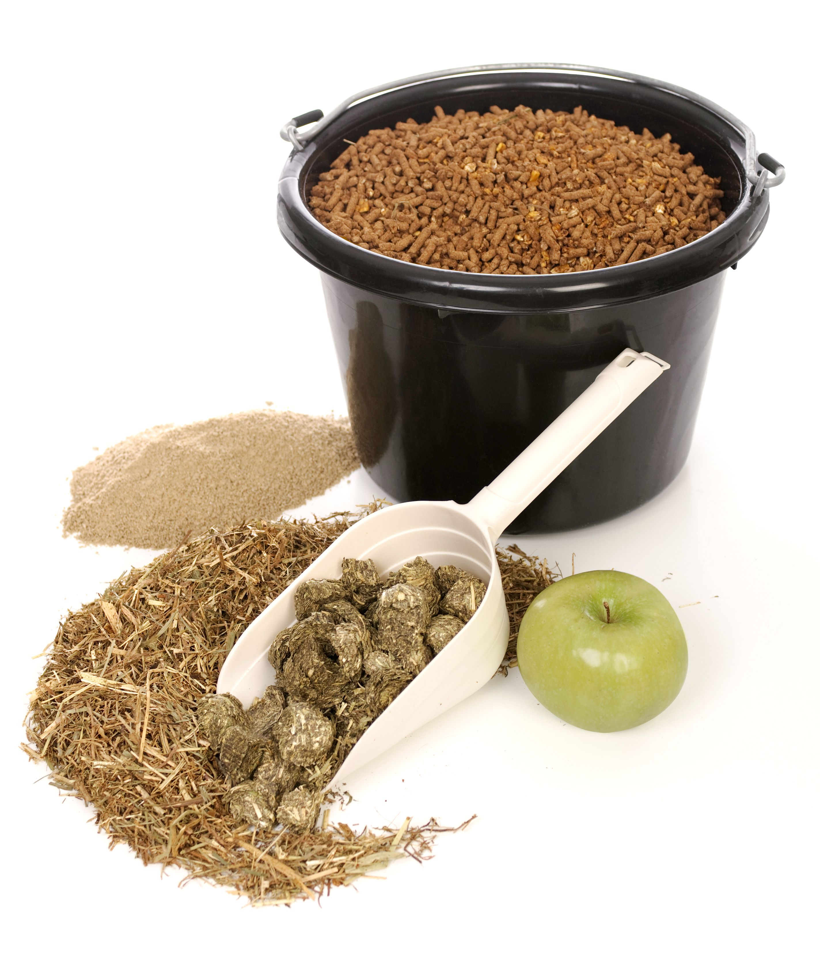 Various types of horse feeds and supplements