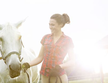 Lead your horses safely and securely