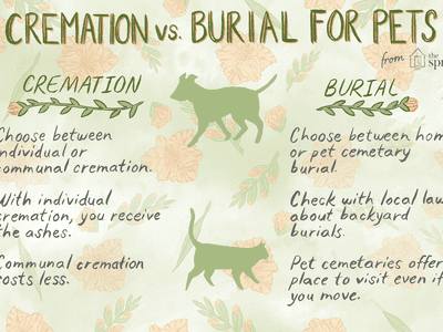 How To Care For Your Pets Remains After Death