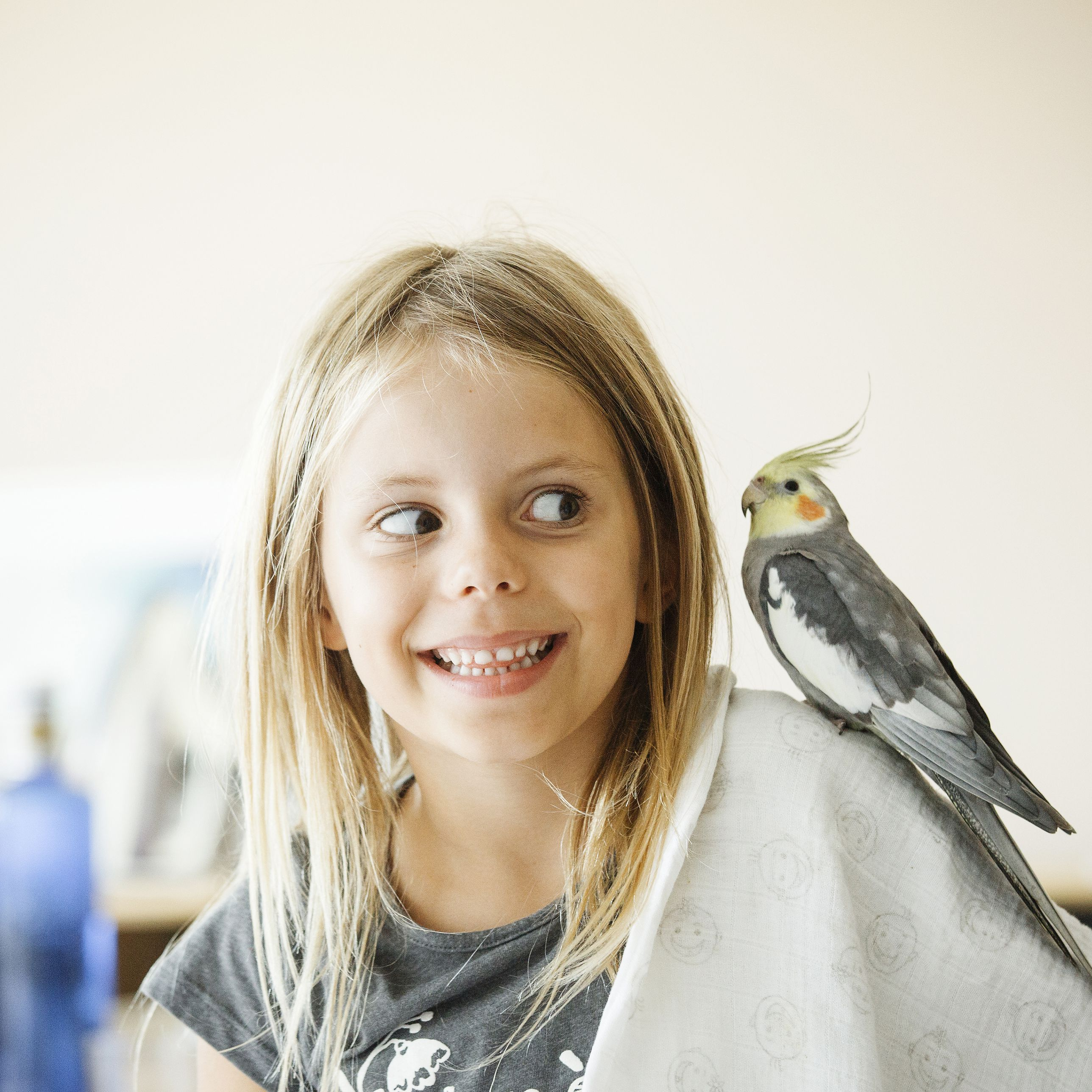 Birds That Make Great Pets for Kids