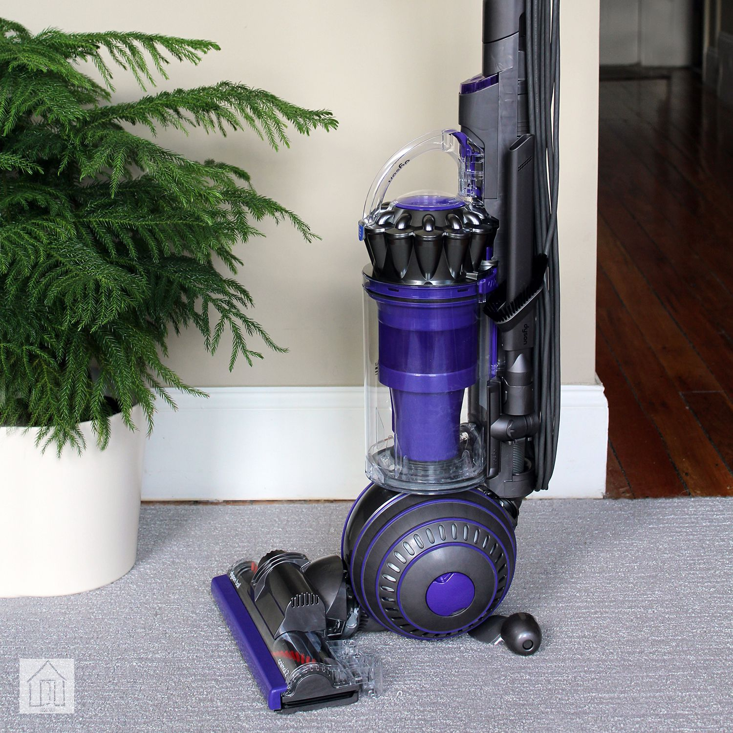 Dyson Ball Animal 2 Review The