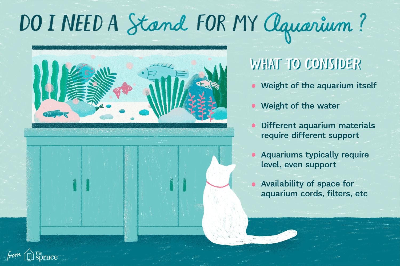 illustration of aquarium stand requirements