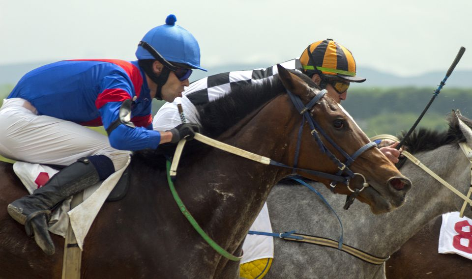 A bay and a gray racehorse battling for the lead.