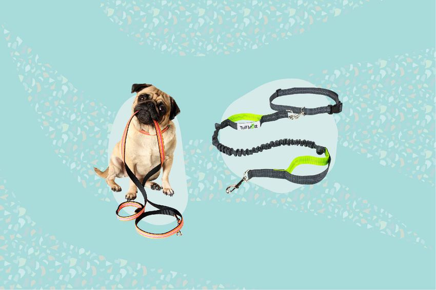 Best Hands Free Leashes