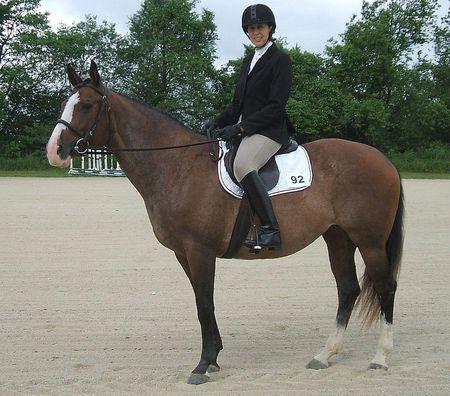 How To Sit Correctly While Horseback Riding
