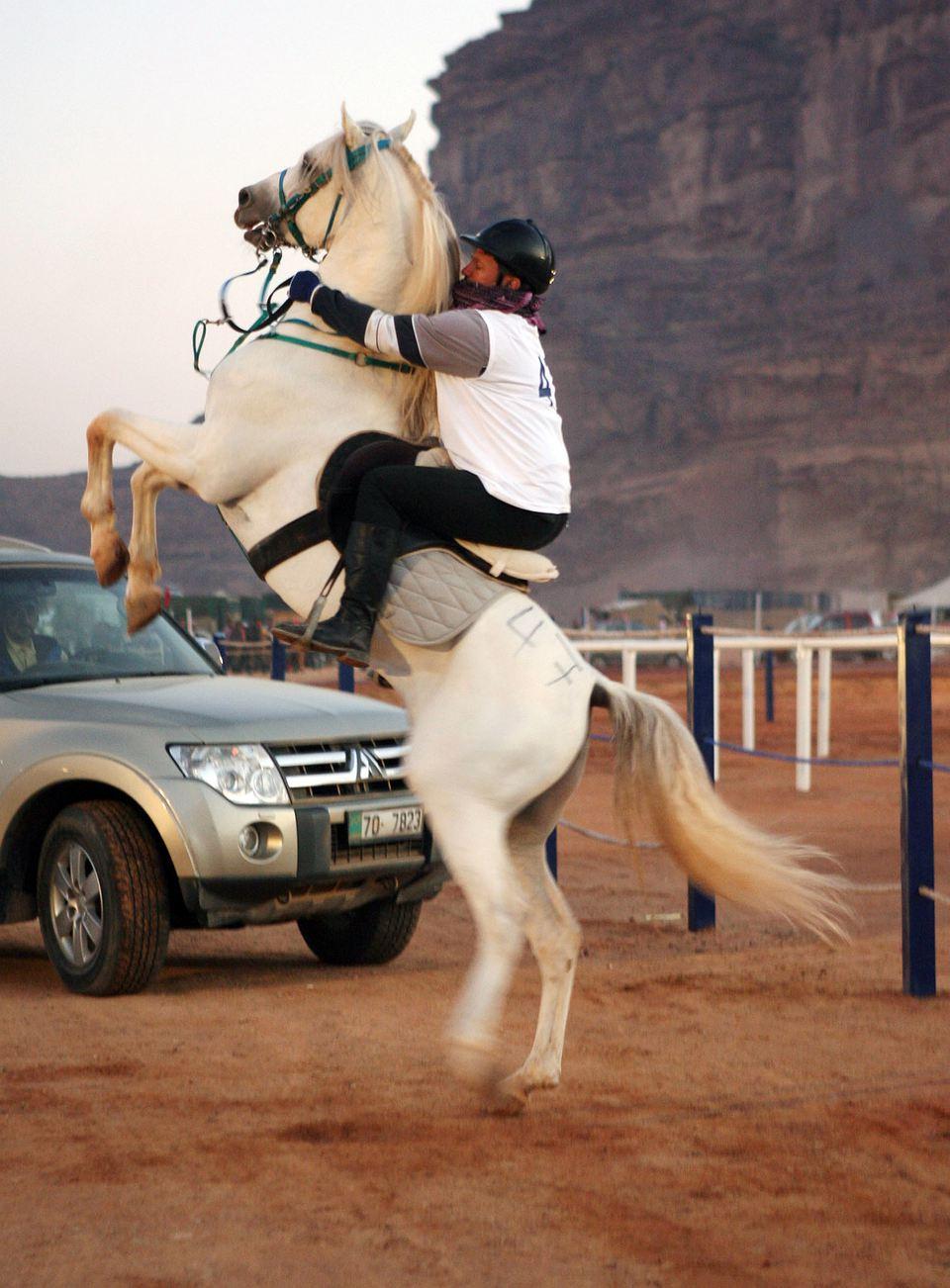 A jockey on a rearing horse